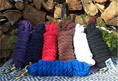 Bridles, Reins and Leads